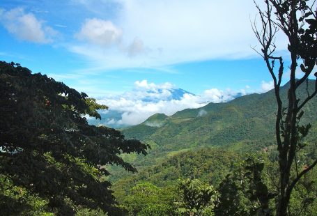 Hiking. Follow the Trails through Panama's Beautiful Countryside.